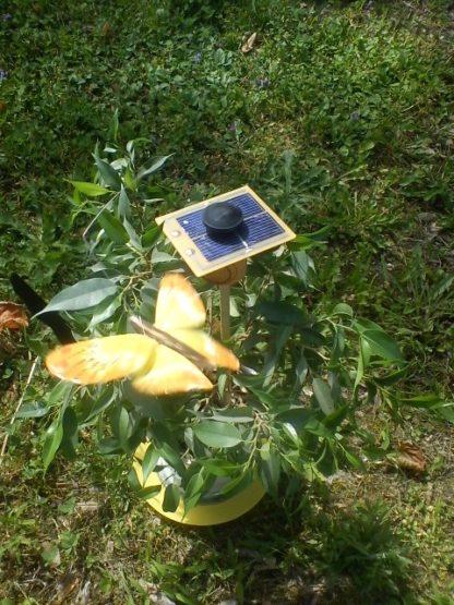 papillon solaire à monter