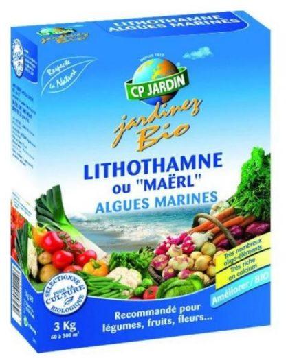 lithothamne ou algues marines